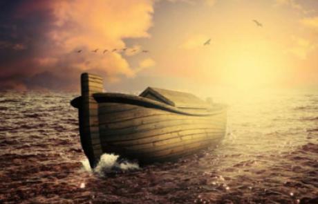 'אור מירושלים' לשבת נח | אפרת בזק