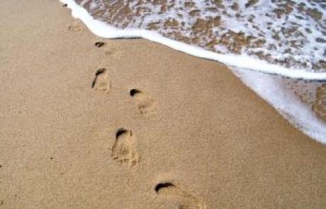 אל תפסיקי ללכת | הרהורי הלב להפטרת בהעלותך | ענבל נופר