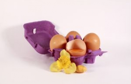 ביצת הפתעה-ריקי לוי