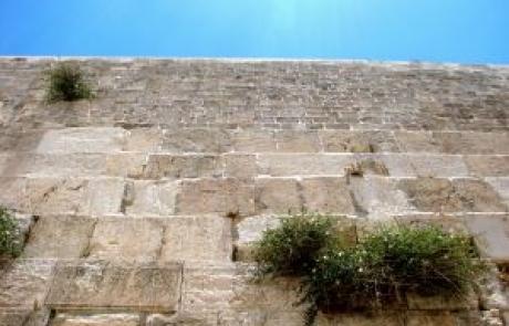 הרב צבי דוד שוורץ – הלכות ימי בין המיצרים