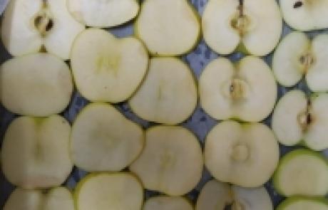 צ'יפס תפוחי עץ | תמר רייס