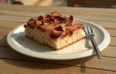 נורית אילון הירש במתכון עוגת פרי בחושה