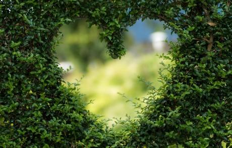מה באמת קרה לנו בגן עדן | חטא מתקנים באהבה | ענבל דרעי