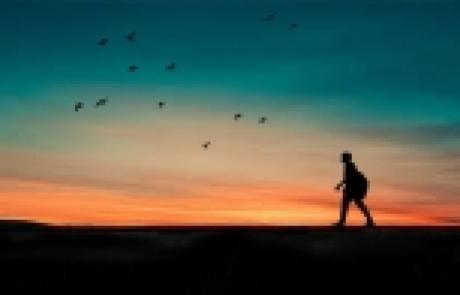 'אור מירושלים' לשבת שמות | אפרת בזק