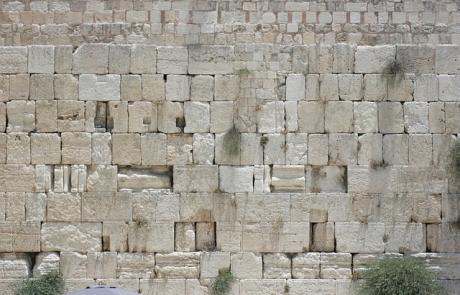 הרב צבי דוד שוורץ | הלכות עשרה בטבת